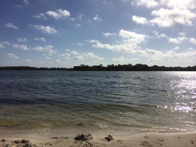 1 - Bay Lake