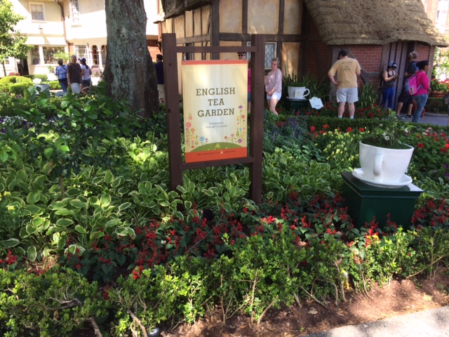 16 - Tea Garden