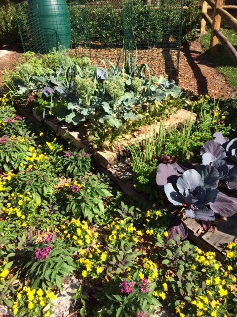 25 - pallet garden
